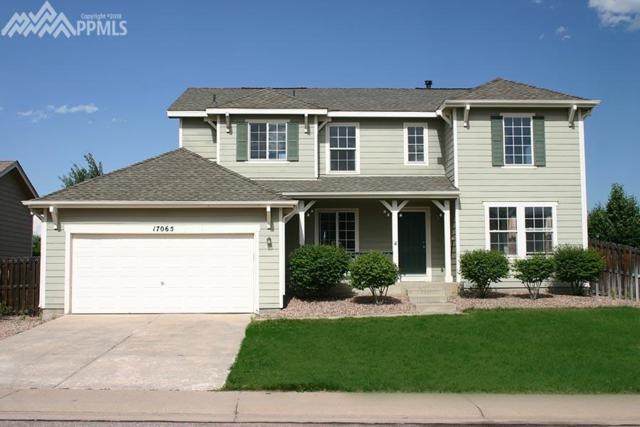 17065 Mountain Lake Drive, Monument, CO 80132 (#6247486) :: 8z Real Estate