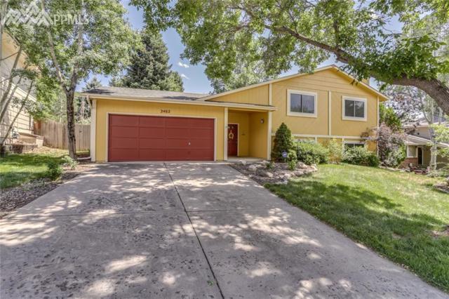 2462 Vintage Drive, Colorado Springs, CO 80920 (#6249246) :: Colorado Home Finder Realty