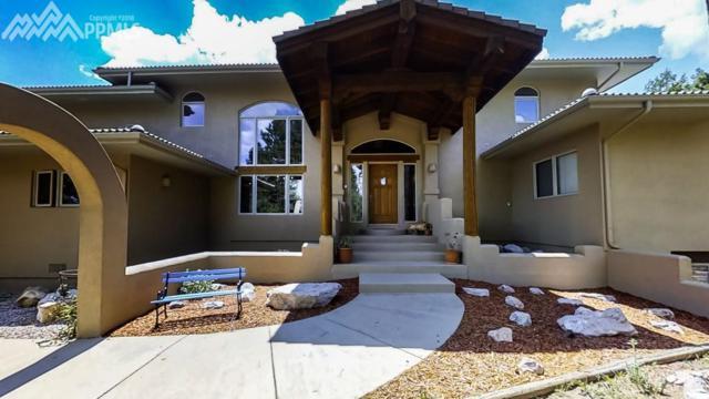 101 Suncrest Place, Divide, CO 80814 (#6251571) :: 8z Real Estate