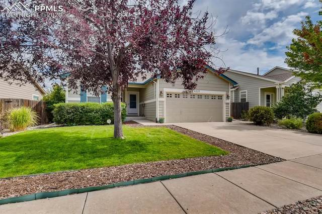 4237 Knollvale Drive, Colorado Springs, CO 80922 (#6252175) :: 8z Real Estate