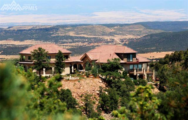 15785 Ridge Ride Point, Colorado Springs, CO 80926 (#6261898) :: Fisk Team, RE/MAX Properties, Inc.