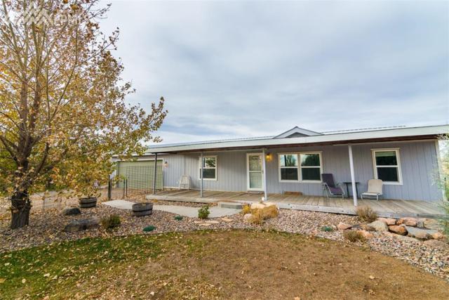 39045 Big Springs Road, Rush, CO 80833 (#6262188) :: The Peak Properties Group