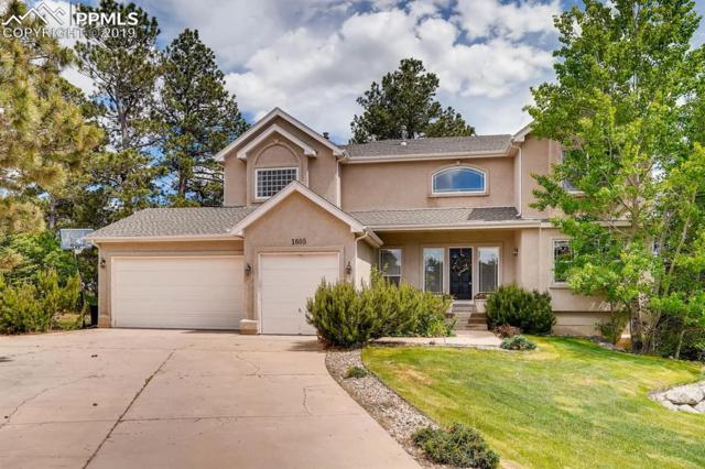 1605 Capadaro Court, Monument, CO 80132 (#6263455) :: Tommy Daly Home Team