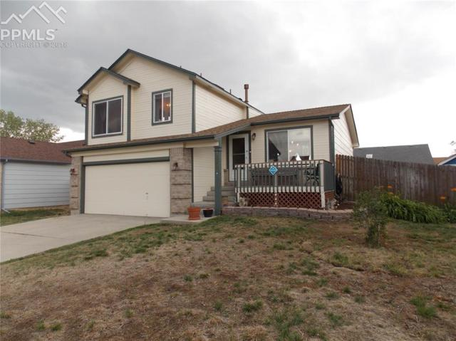 1575 W Limelight Court, Colorado Springs, CO 80906 (#6263483) :: The Peak Properties Group