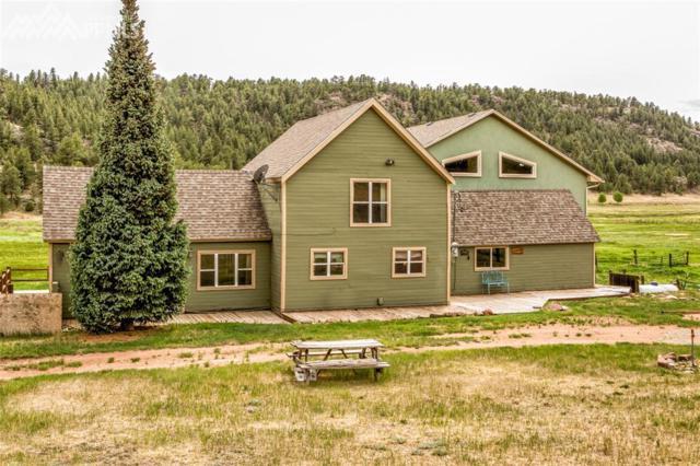 1636 Lakemoor Drive, Florissant, CO 80816 (#6264510) :: 8z Real Estate