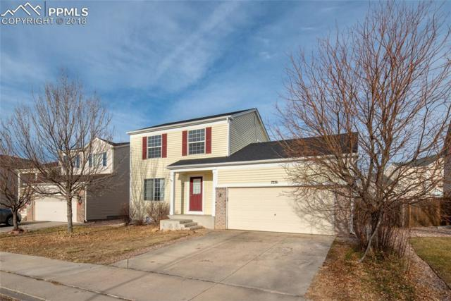 7236 Village Meadows Drive, Fountain, CO 80817 (#6265803) :: Action Team Realty