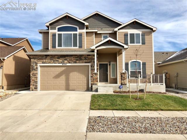 6337 Shooting Iron Way, Colorado Springs, CO 80923 (#6272020) :: Venterra Real Estate LLC