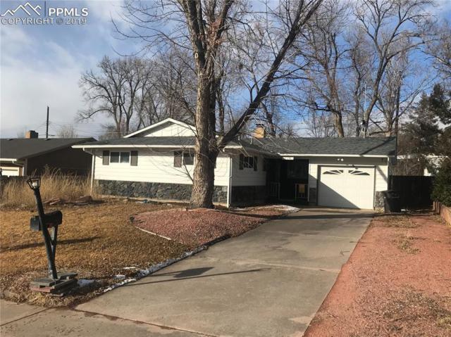 528 Esther Drive, Colorado Springs, CO 80911 (#6276065) :: The Kibler Group