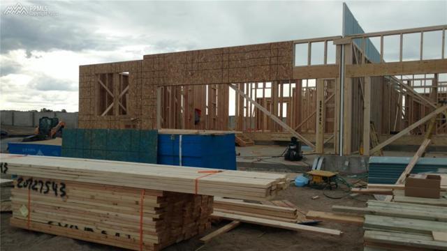 11475 Rill Point, Colorado Springs, CO 80921 (#6280324) :: 8z Real Estate