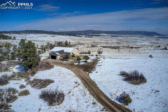 18090 Connestoga Court, Peyton, CO 80831 (#6281081) :: Tommy Daly Home Team