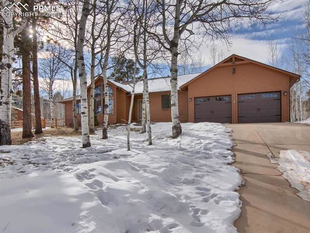 1100 Wagon Place, Woodland Park, CO 80863 (#6281134) :: Perfect Properties powered by HomeTrackR