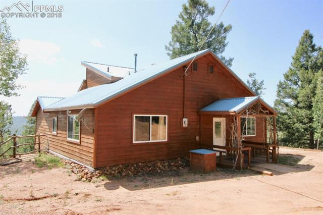119 May Queen Circle, Cripple Creek, CO 80813 (#6284029) :: Action Team Realty