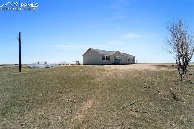11980 County Road 133 Road, Simla, CO 80835 (#6288146) :: Fisk Team, RE/MAX Properties, Inc.