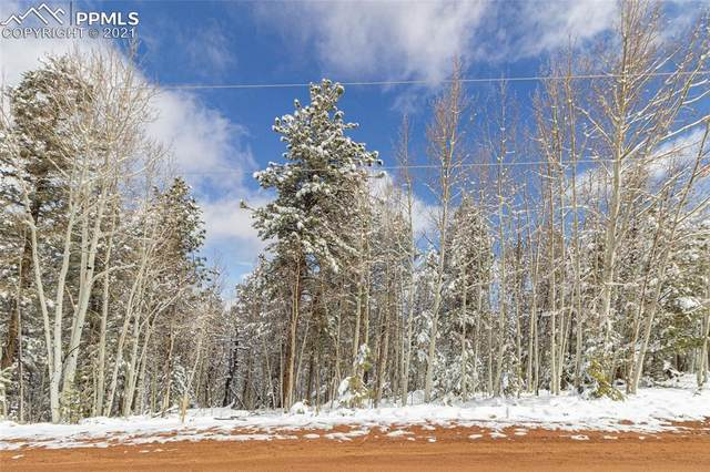 57 May Queen Circle, Cripple Creek, CO 80813 (#6288261) :: The Treasure Davis Team | eXp Realty