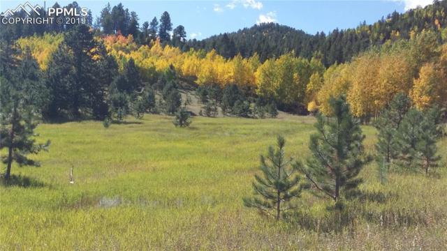 5503 County 1 Road, Cripple Creek, CO 80813 (#6288981) :: 8z Real Estate