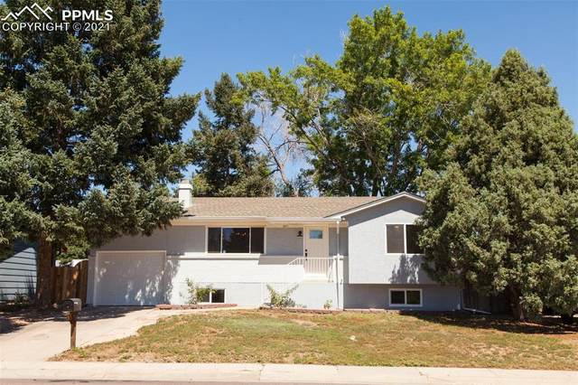 3811 Indianpipe Circle, Colorado Springs, CO 80918 (#6292527) :: Action Team Realty