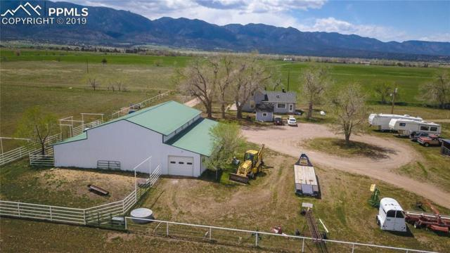 686 County Road 297, Wetmore, CO 81253 (#6292857) :: 8z Real Estate