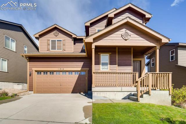 11514 Wildwood Ridge Drive, Colorado Springs, CO 80921 (#6293341) :: The Peak Properties Group