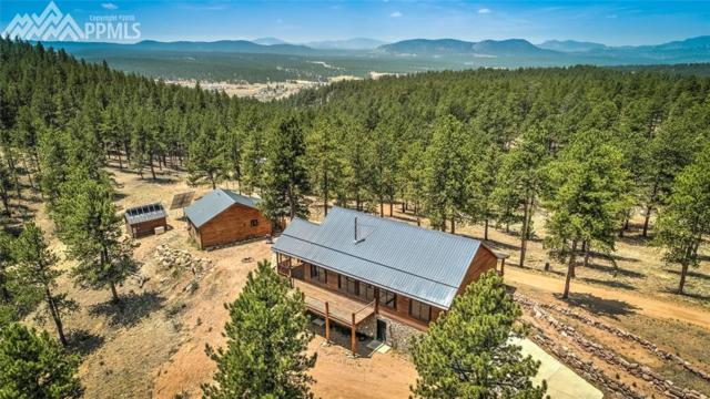 4573 W Highway 24, Florissant, CO 80816 (#6297195) :: The Treasure Davis Team