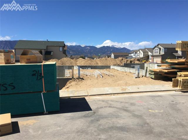 4252 Little Rock View, Colorado Springs, CO 80911 (#6303826) :: The Peak Properties Group