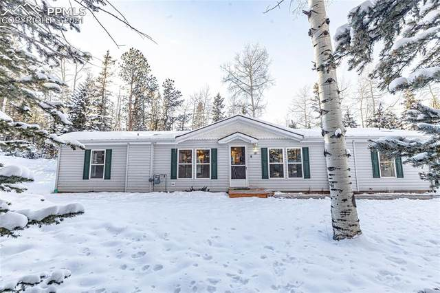 181 Jenwood Drive, Florissant, CO 80816 (#6307112) :: Fisk Team, RE/MAX Properties, Inc.