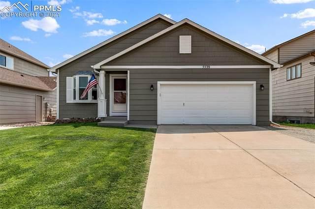 5539 Marabou Way, Colorado Springs, CO 80911 (#6309249) :: Action Team Realty