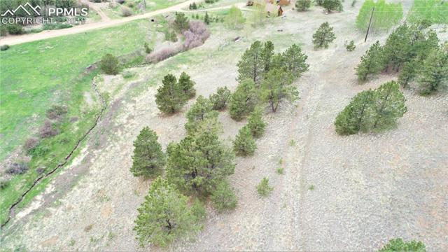 521 Monarch Drive, Cripple Creek, CO 80813 (#6311354) :: 8z Real Estate