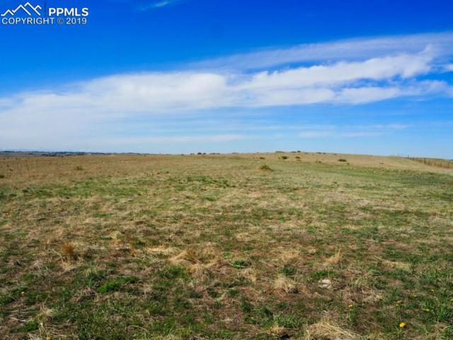 43255 Ptarmigan Road, Parker, CO 80138 (#6312653) :: 8z Real Estate