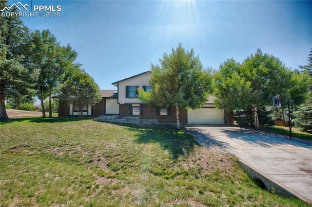 445 Picasso Court, Colorado Springs, CO 80921 (#6317380) :: The Hunstiger Team