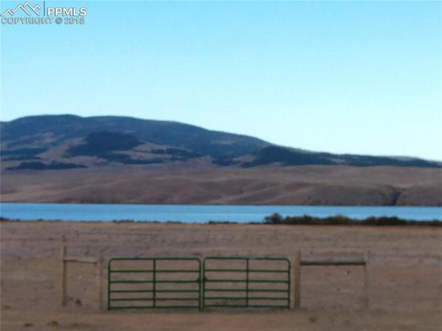 1747 County 92 Road, Lake George, CO 80827 (#6319435) :: Colorado Home Finder Realty
