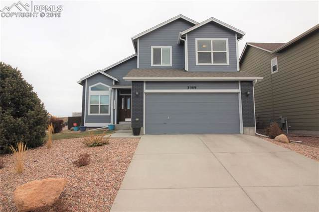 3989 Reindeer Circle, Colorado Springs, CO 80922 (#6320608) :: Tommy Daly Home Team