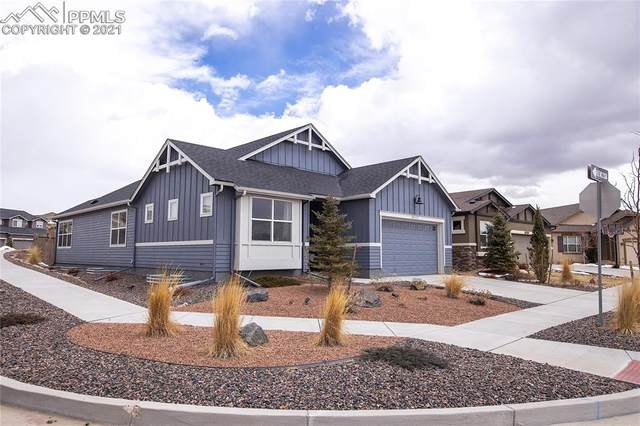 10147 Barbour Fork Court, Colorado Springs, CO 80924 (#6323431) :: Finch & Gable Real Estate Co.