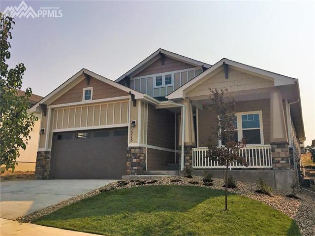 11715 Spectacular Bid Circle, Colorado Springs, CO 80921 (#6330078) :: 8z Real Estate