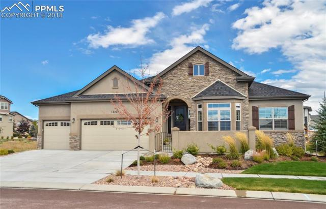 12527 Chatter Creek Court, Colorado Springs, CO 80921 (#6333145) :: The Hunstiger Team