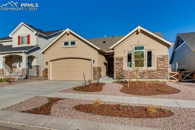 7119 Fauna Glen Drive, Colorado Springs, CO 80927 (#6334369) :: The Artisan Group at Keller Williams Premier Realty