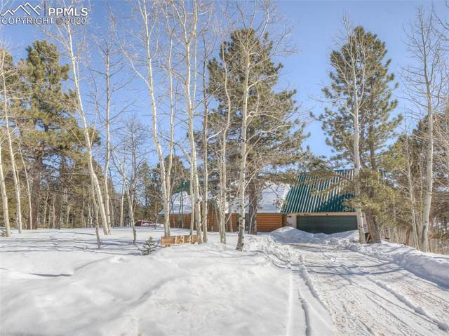 134 Rainbow Trail, Divide, CO 80814 (#6337548) :: 8z Real Estate