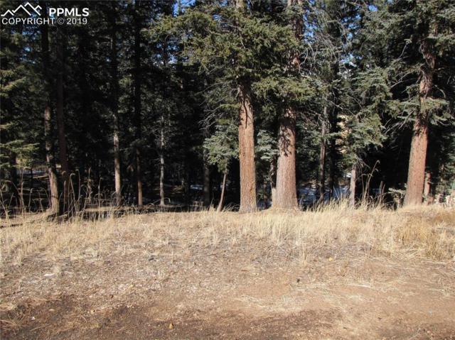 250 Iron Eagle Point, Woodland Park, CO 80863 (#6339777) :: The Treasure Davis Team