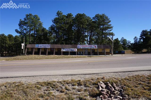 11605 Black Forest Road, Colorado Springs, CO 80908 (#6342193) :: Action Team Realty