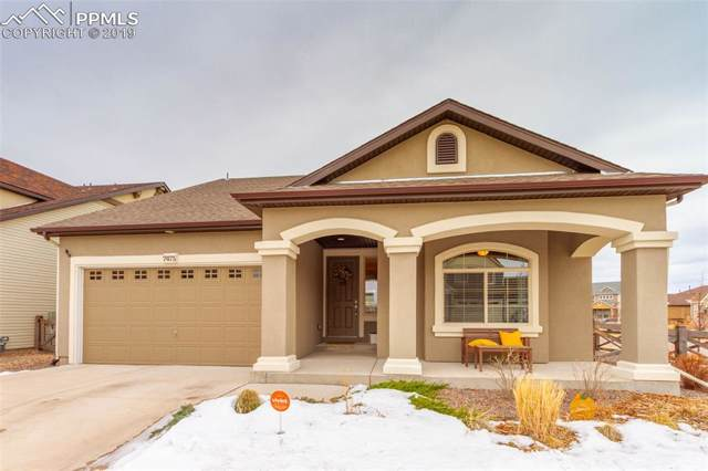 7475 Mountain Spruce Drive, Colorado Springs, CO 80927 (#6343049) :: Action Team Realty