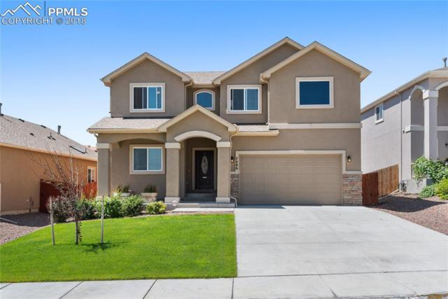 7486 Dutch Loop, Colorado Springs, CO 80925 (#6344809) :: Jason Daniels & Associates at RE/MAX Millennium