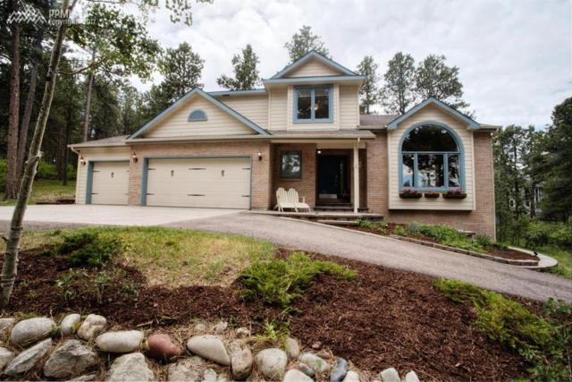 1275 Lone Scout Lookout, Monument, CO 80132 (#6345980) :: Jason Daniels & Associates at RE/MAX Millennium