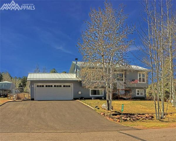 828 E Northwoods Drive, Woodland Park, CO 80863 (#6347760) :: The Dunfee Group - Keller Williams Partners Realty