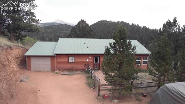 443 Beaver Pond Road, Divide, CO 80814 (#6349557) :: The Treasure Davis Team