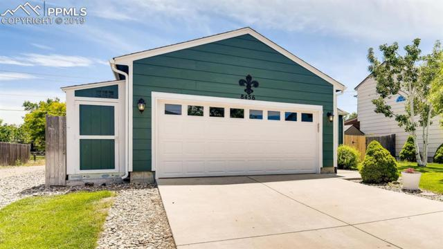8456 Dassel Drive, Fountain, CO 80817 (#6351549) :: Tommy Daly Home Team