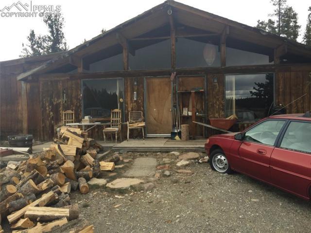 657 County 12 Road, Alma, CO 80420 (#6352150) :: The Treasure Davis Team
