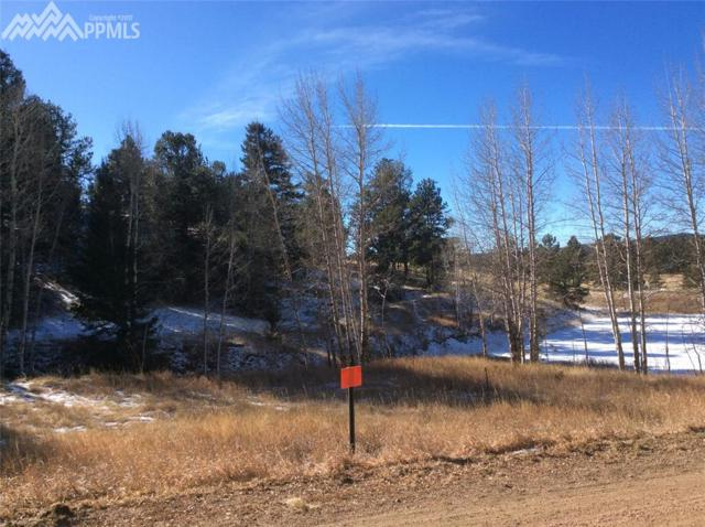 64 Indian Head Circle, Florissant, CO 80816 (#6353705) :: The Treasure Davis Team