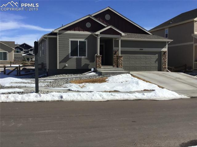 17857 Lapis Court, Monument, CO 80132 (#6353730) :: CENTURY 21 Curbow Realty