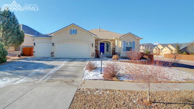 5706 Dusty Chaps Drive, Colorado Springs, CO 80923 (#6354206) :: Action Team Realty