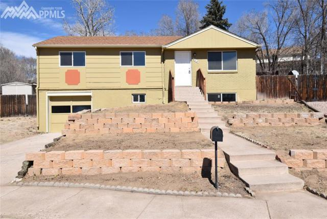 4318 Pope Place, Colorado Springs, CO 80916 (#6360771) :: The Peak Properties Group