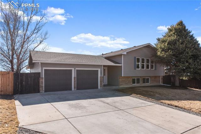 7443 Fortman Avenue, Fountain, CO 80817 (#6365296) :: Perfect Properties powered by HomeTrackR